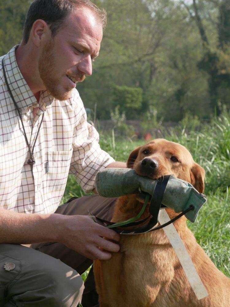 James Bawden with Labrador Stud dog, Vinnie