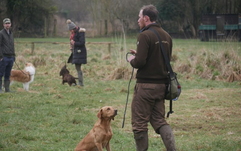 James with a labrador leading a group training session.